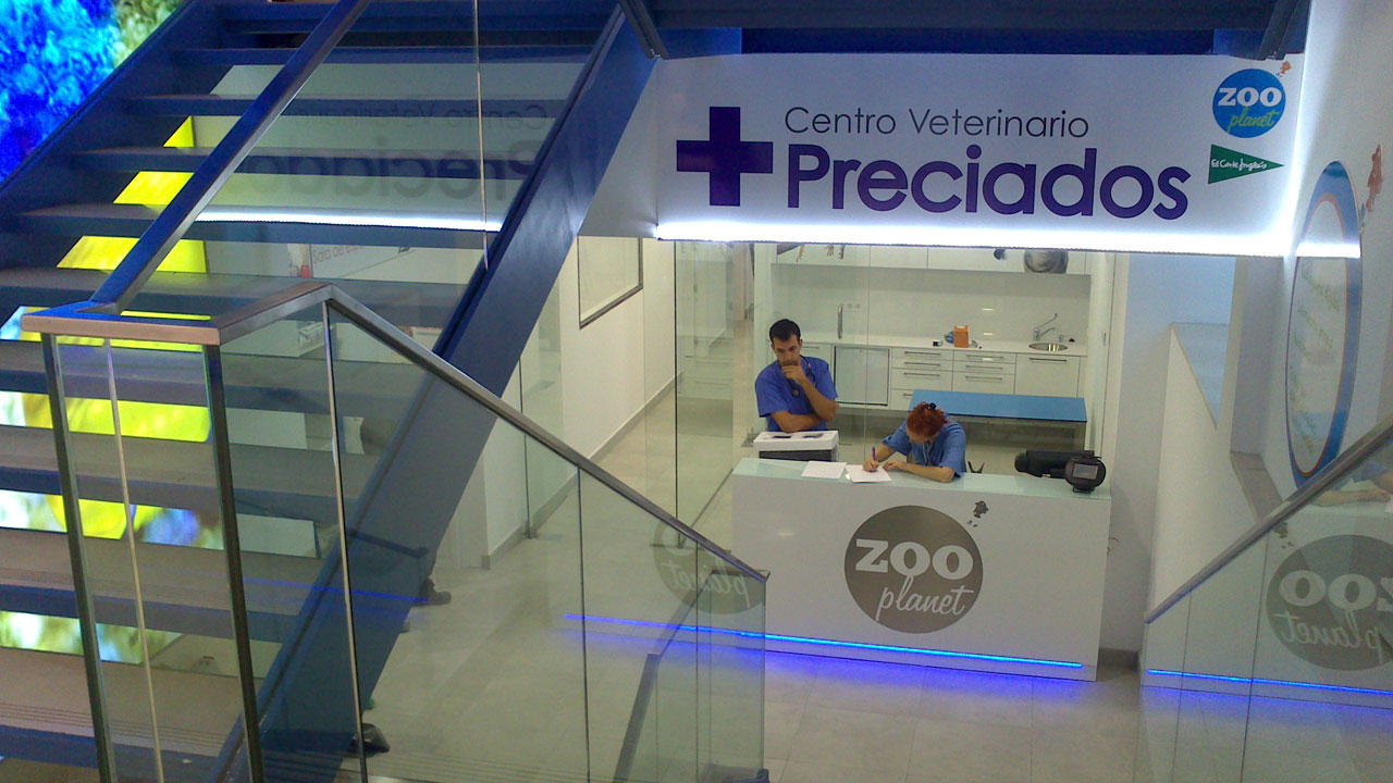 Proyecto de obre y actividad de centro veterinario Preciados