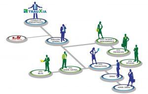 Estructura empresa Trauxia